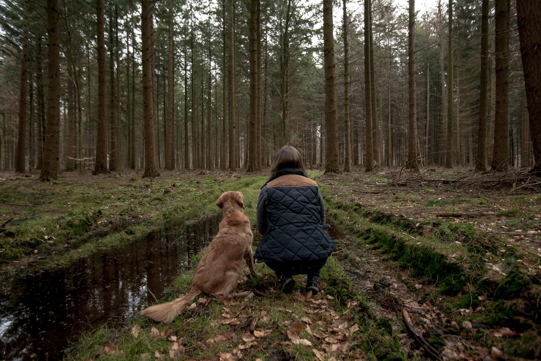 sachsenwald-mit-hund