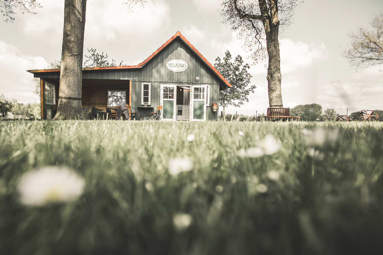 Das-huebsche-gruene-Holzhaus-Melkhus-bei-Schneverdingen