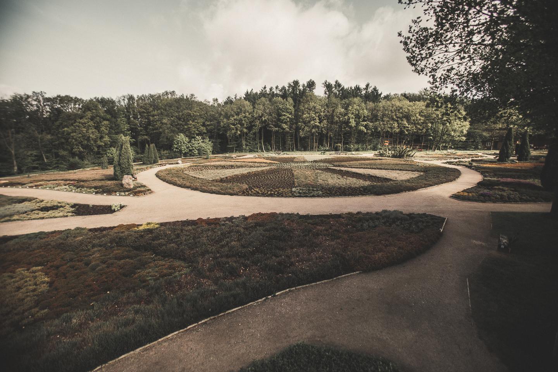 Der-Heidegarten-in-Schneverdingen