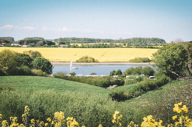 Segeltoern-Schlei-Rapsfelder-links-und-rechts-an-den-Ufern
