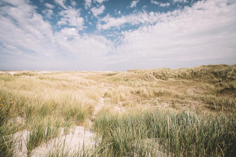 Ein letztes Mal die wunderschöne Dünenlandschaft in Sankt Peter Ording genießen.