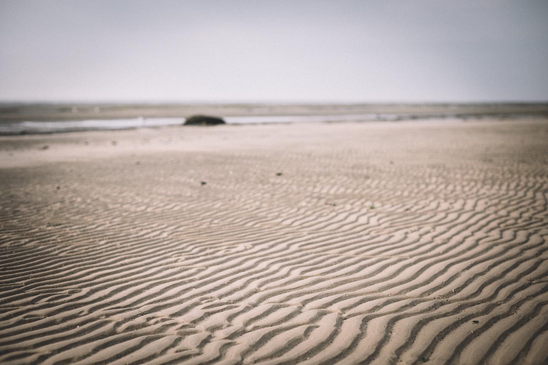 Robbenbeobachten-auf-Langeoog-leider-ohne-Erfolg
