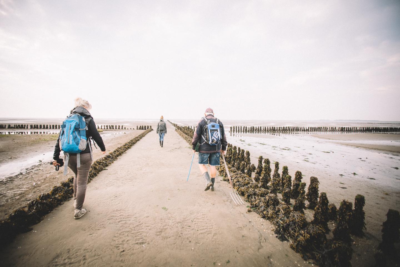Start-unserer-Wattwanderung-mit-Ossi-auf-Langeoog